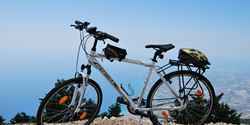 Trekking bike Ideal Nergetic